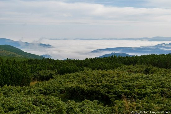 Mystical beauty of the Crpathians, Ukraine photo 13