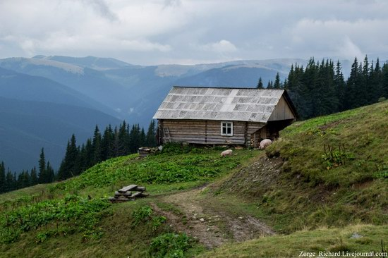 Mystical beauty of the Crpathians, Ukraine photo 15