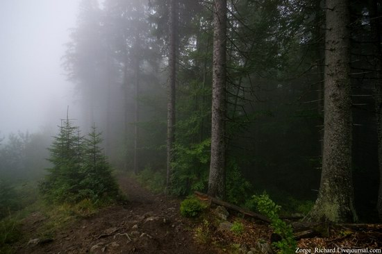 Mystical beauty of the Crpathians, Ukraine photo 6