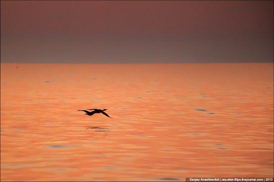 Amazing Sunrise at Cape Kiik-Atlama, Crimea, Ukraine photo 7