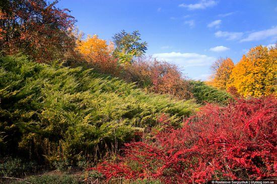 Botanical Garden, Krivoy Rog, Ukraine photo 1