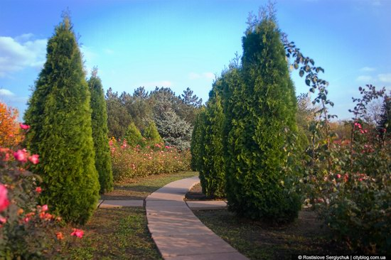 Botanical Garden, Krivoy Rog, Ukraine photo 17