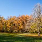 Golden autumn in the most beautiful park of Ukraine
