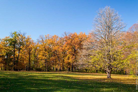 Golden Autumn in Sofiyivka Park, Uman, Ukraine photo 1