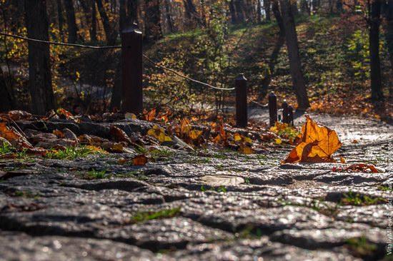 Golden Autumn in Sofiyivka Park, Uman, Ukraine photo 10