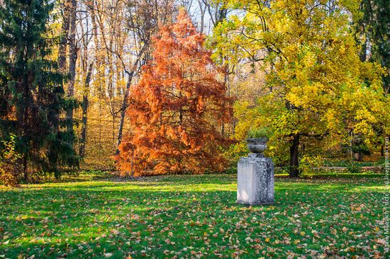 Golden Autumn in Sofiyivka Park, Uman, Ukraine photo 18