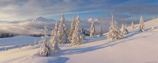 Winter Fairy Tale in the Carpathians, Ukraine, photo 10