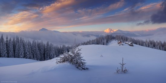 Winter Fairy Tale in the Carpathians, Ukraine, photo 11