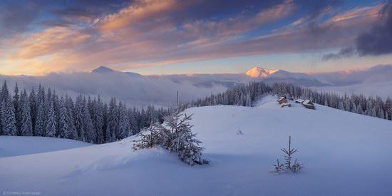 Winter Fairy Tale in the Carpathians, Ukraine, photo 11