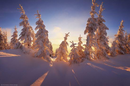 Winter Fairy Tale in the Carpathians, Ukraine
