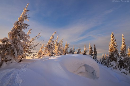 Winter Fairy Tale in the Carpathians, Ukraine, photo 13