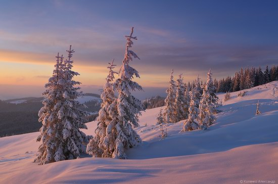 Winter Fairy Tale in the Carpathians, Ukraine, photo 14