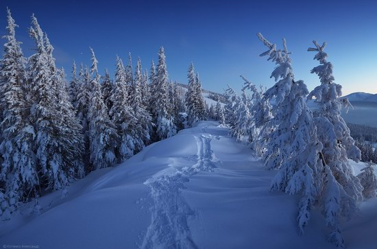Winter Fairy Tale in the Carpathians, Ukraine, photo 17