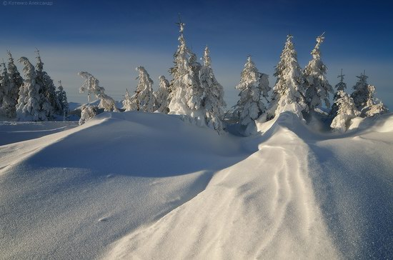 Winter Fairy Tale in the Carpathians, Ukraine, photo 3