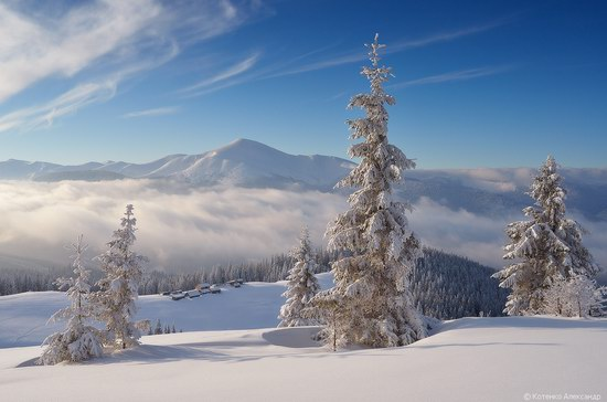 Winter Fairy Tale in the Carpathians, Ukraine, photo 7