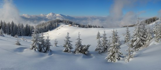 Winter Fairy Tale in the Carpathians, Ukraine, photo 8