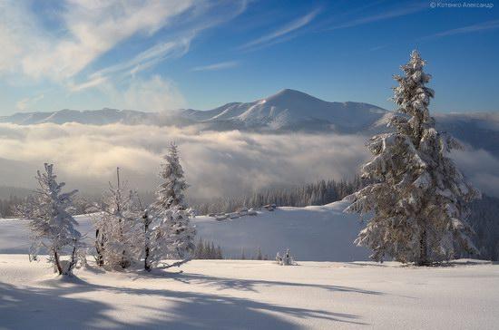 Winter Fairy Tale in the Carpathians, Ukraine, photo 9