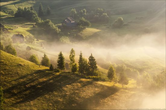 Pastoral Summer Landscapes of Transcarpathia, Ukraine photo 1