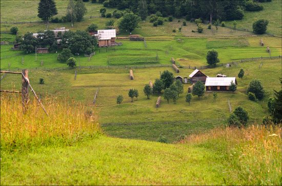 Pastoral Summer Landscapes of Transcarpathia, Ukraine photo 10