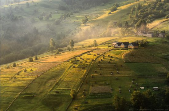 Pastoral Summer Landscapes of Transcarpathia, Ukraine photo 13