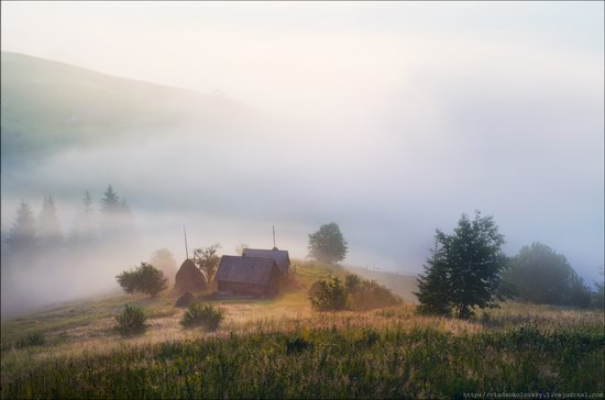 Pastoral Summer Landscapes of Transcarpathia, Ukraine photo 16