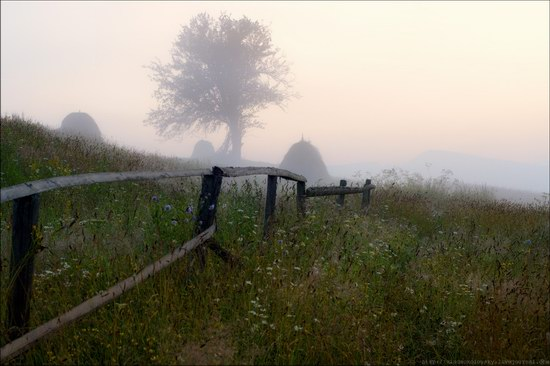 Pastoral Summer Landscapes of Transcarpathia, Ukraine photo 3