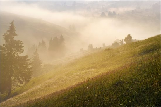 Pastoral Summer Landscapes of Transcarpathia, Ukraine photo 9