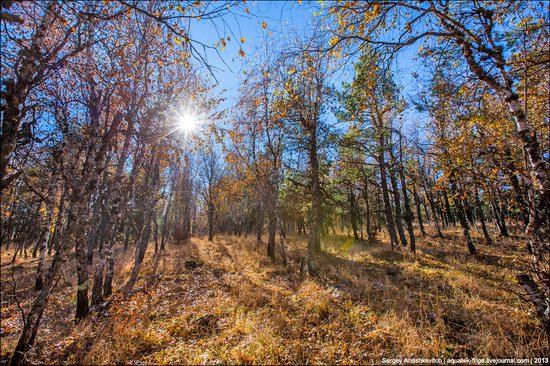 Beautiful fall on Ai-Petri in Crimea, Ukraine, photo 1