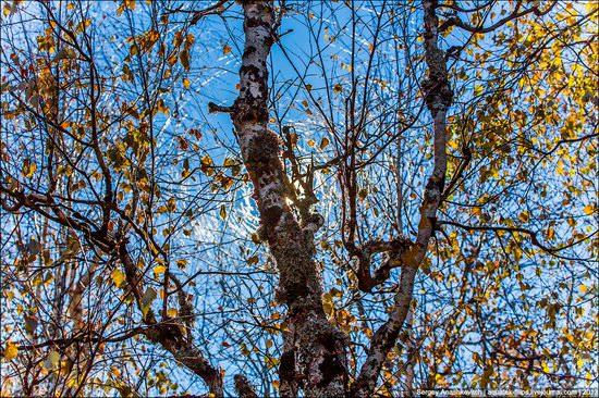 Beautiful fall on Ai-Petri in Crimea, Ukraine, photo 17