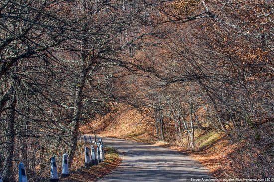 Beautiful fall on Ai-Petri in Crimea, Ukraine, photo 3