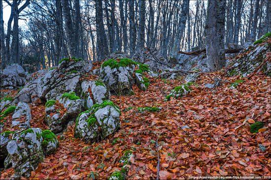 Beautiful fall on Ai-Petri in Crimea, Ukraine, photo 6