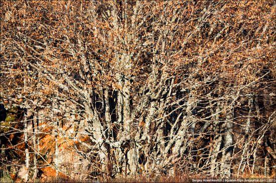 Beautiful fall on Ai-Petri in Crimea, Ukraine, photo 8
