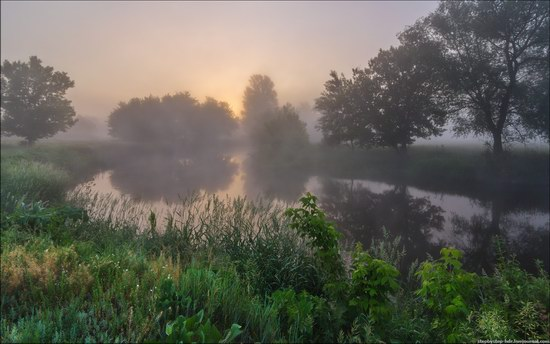 Scenic summer landscapes of Kharkiv region, Ukraine, photo 10