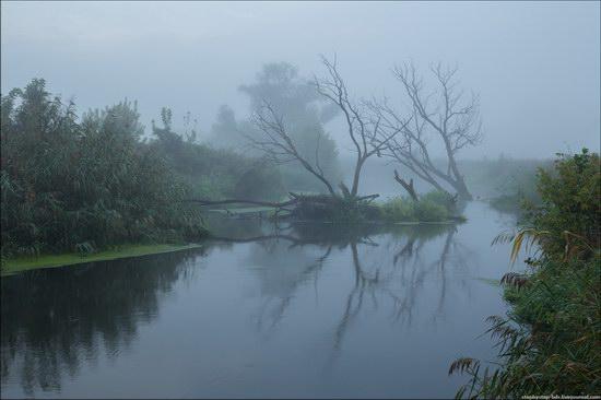 Scenic summer landscapes of Kharkiv region, Ukraine, photo 13