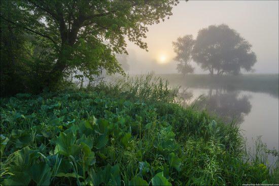 Scenic summer landscapes of Kharkiv region, Ukraine, photo 8
