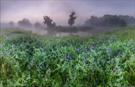 Scenic summer landscapes of Kharkiv region, Ukraine, photo 9