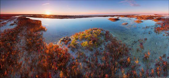 Syvash Bay - the Rotten Sea, Crimea, Ukraine