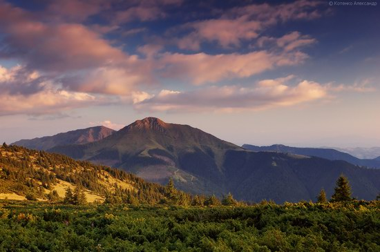 Hutsul Alps, Zakarpattia region, Ukraine, photo 14