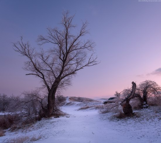 Beautiful winter landscapes - the Krynka River, Ukraine, photo 6