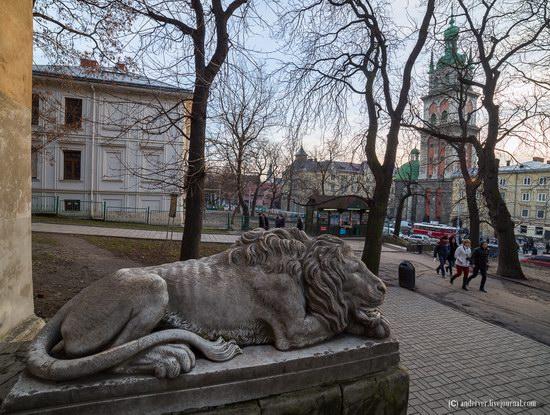 Beautiful architecture of Lviv, Ukraine, photo 6
