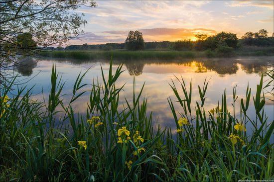 Cool morning, the Oskol River, Ukraine, photo 1