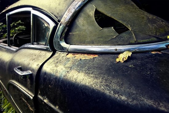 Abandoned vintage cars, Ukraine, photo 10
