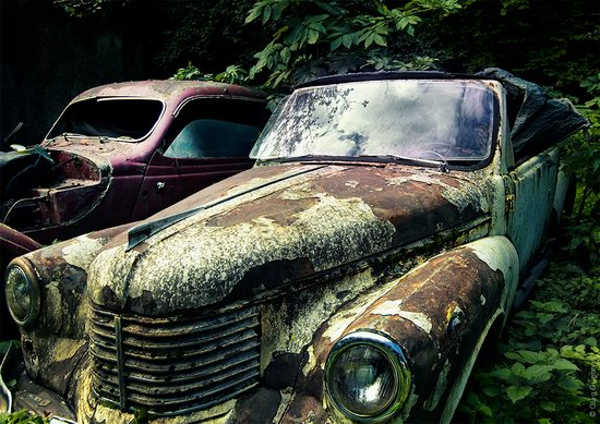 Abandoned vintage cars, Ukraine, photo 11