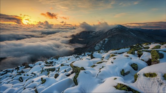 Gorgany Mountains, Carpathians, Ukraine