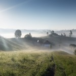Misty rural landscapes of the Carpathians