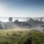Misty rural landscapes of the Carpathians