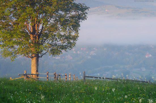 Misty landscapes, the Carpathians, Ukraine, photo 6