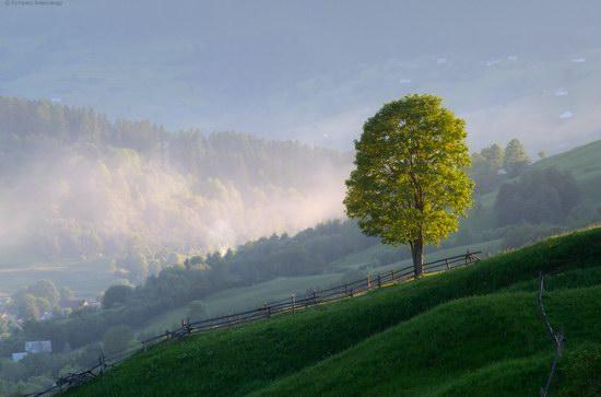 Misty landscapes, the Carpathians, Ukraine, photo 8