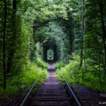 """The Tunnel of Love"" – the most picturesque place in Ukraine"