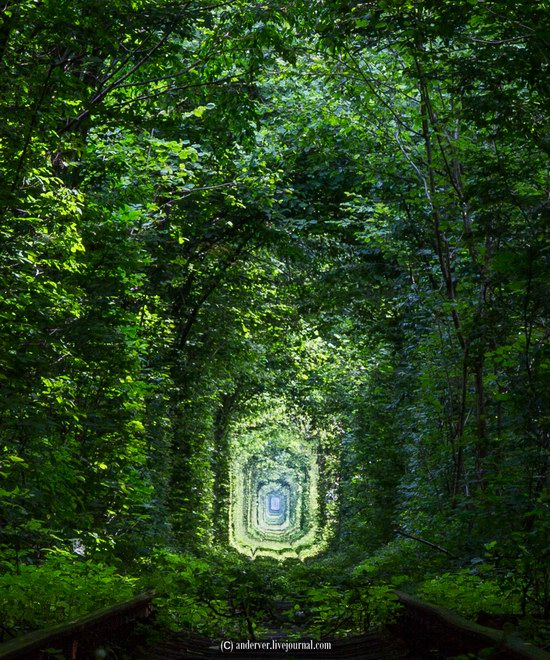 The Tunnel of Love, Rivne region, Ukraine, photo 10